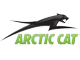 Arctic Cat buggies for sale